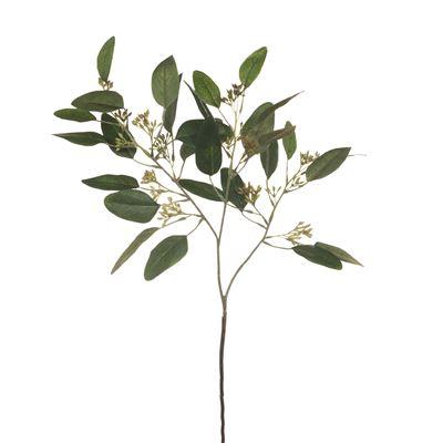 Eucalyptus Leaf W/Seed Green 62Cml
