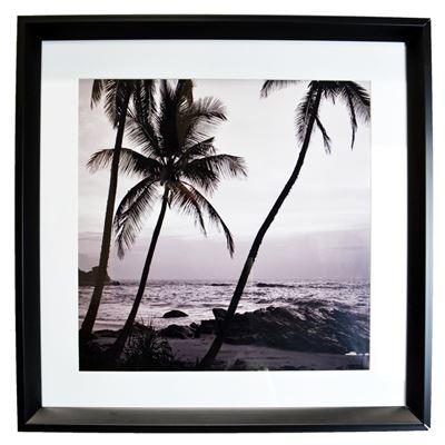 Beach Palms Print with Black Frame