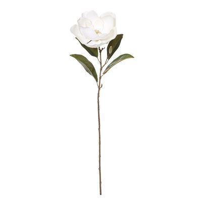 Magnolia Stem White