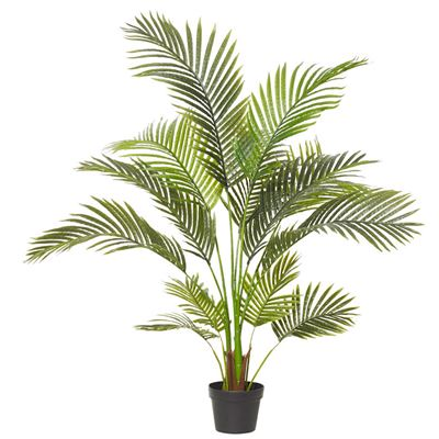 Areca Palm Green 90x120cm