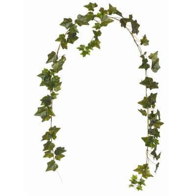 English Ivy Garland 182cm