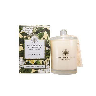 Frangipani & Gardenia Candle 60 Hour