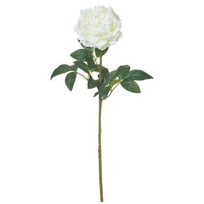 Peony Stem 25x18x71cm White