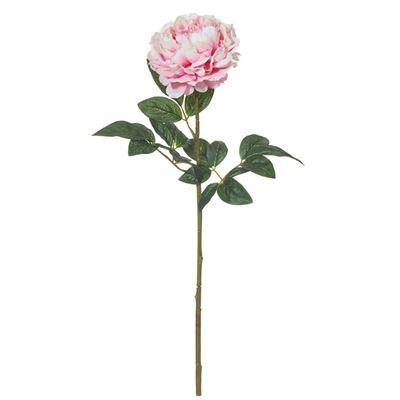 Peony Stem 25x18x71cm Pink