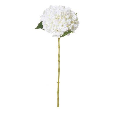 Hydrangea Stem 65cm White