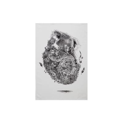 Marini Ferlazzo Tea Towel 50X70Cm Koala