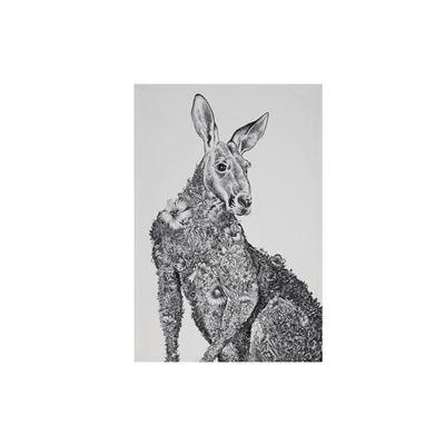 Marini Ferlazzo Tea Towel 50X70Cm Kangaroo