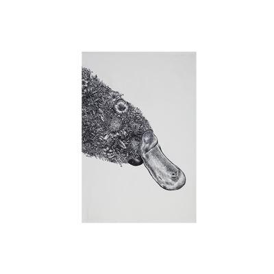 Marini Ferlazzo Tea Towel 50X70Cm Platypus