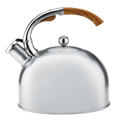 Raco Elements 2.5L Stovetop Kettle