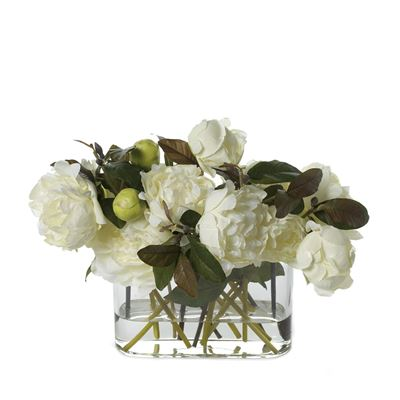 Peony In Vase W/Water White/Cream Green 36Cmh