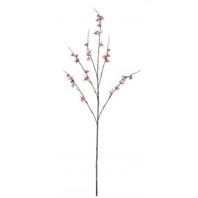 Peach Blossom 120cm Pink