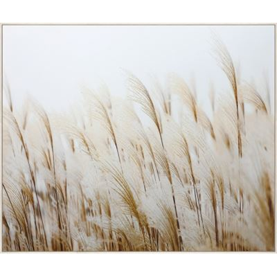 Pampas Grass Canvas 120x100cm