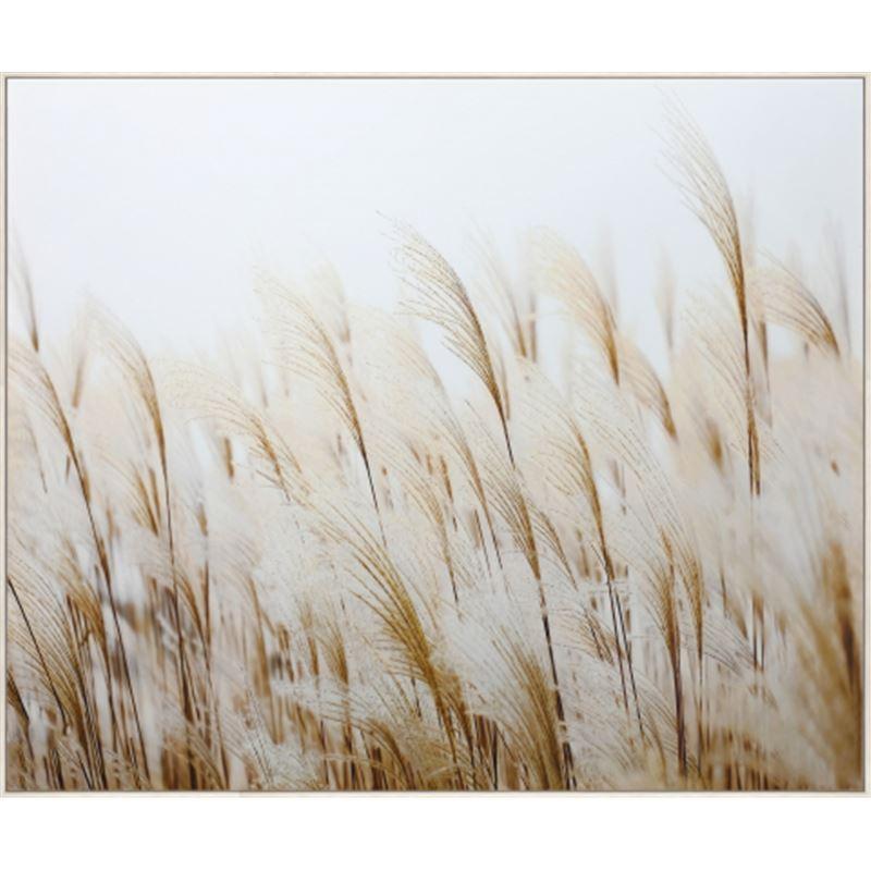 Pampas Grass Canvas 120x100cm