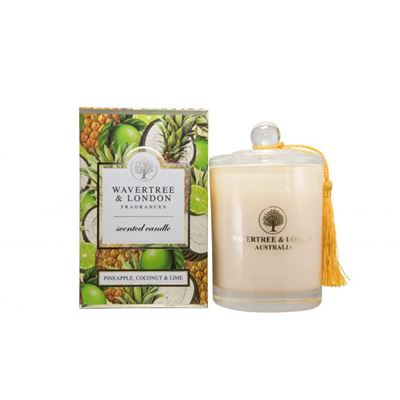 Pineapple Coconut Lime Candle 60 Hour