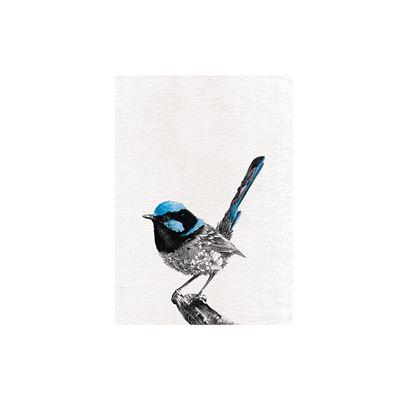 Marini Ferlazzo Birds Tea Towel 50x70cm Superb Fry-Wren
