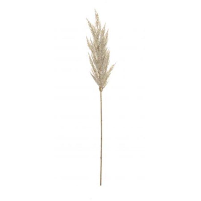 Pampas Grass Spray Cream 92cm