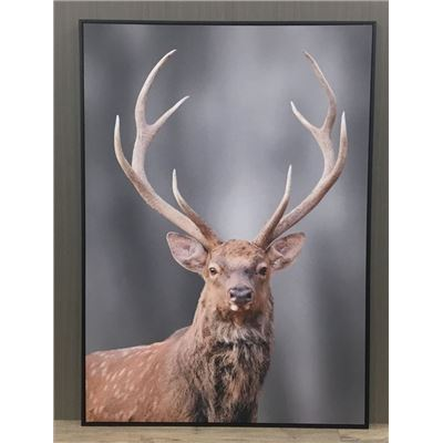 Edward The Deer Canvas