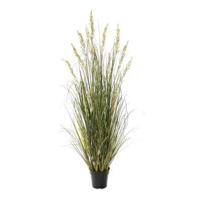 Wetland Grass - Garden Pot Green/Green 140cm