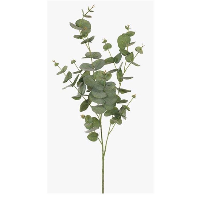 Eucalyptus Silver Dollar Green 92cml