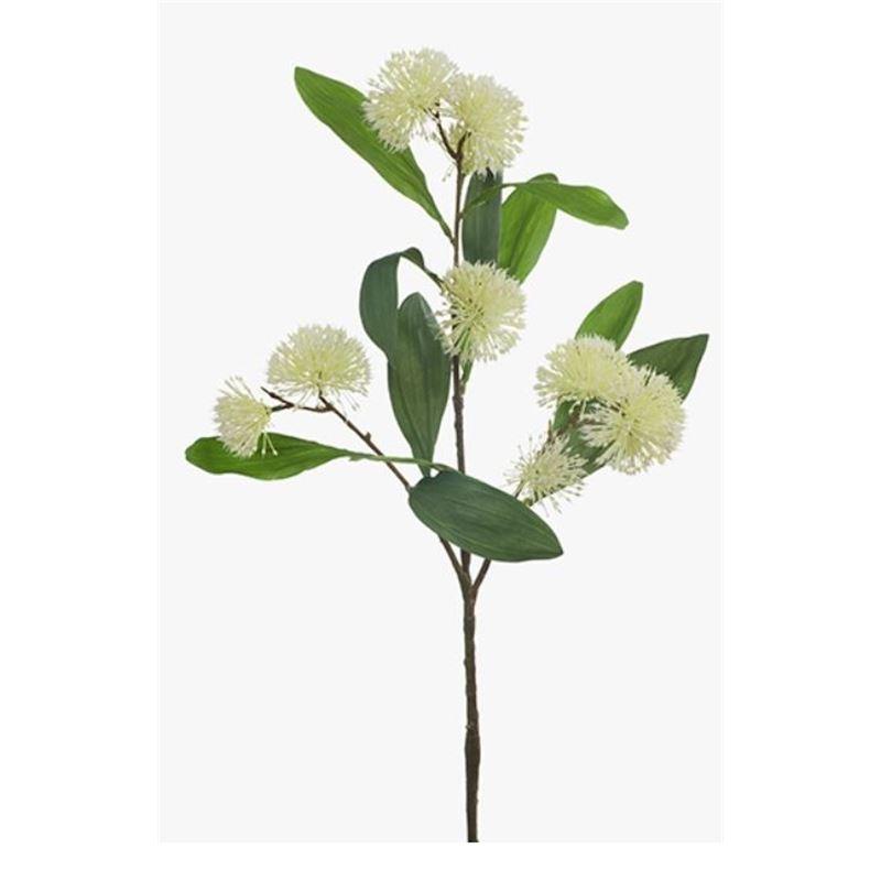 Sweet Gum Blossom Cream 71cml