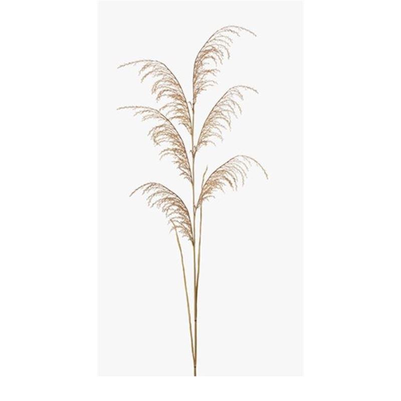 Reed Grass Spray Natural 130cml
