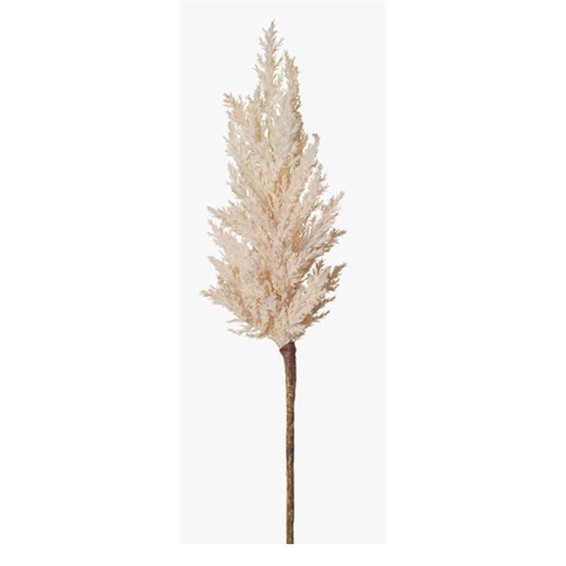 Plume Grass Spray Cream 83cml