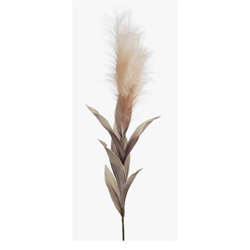 Pampas Grass Blush Pink 113cml