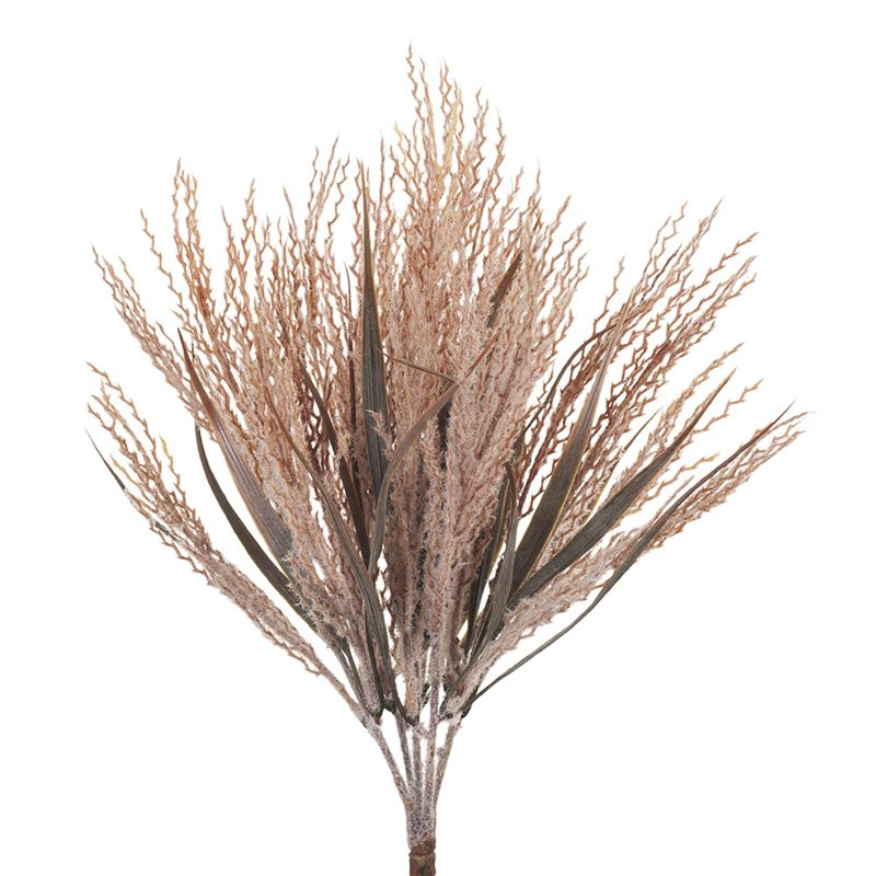 Plume Grass Bush Dusty Pink 39cm