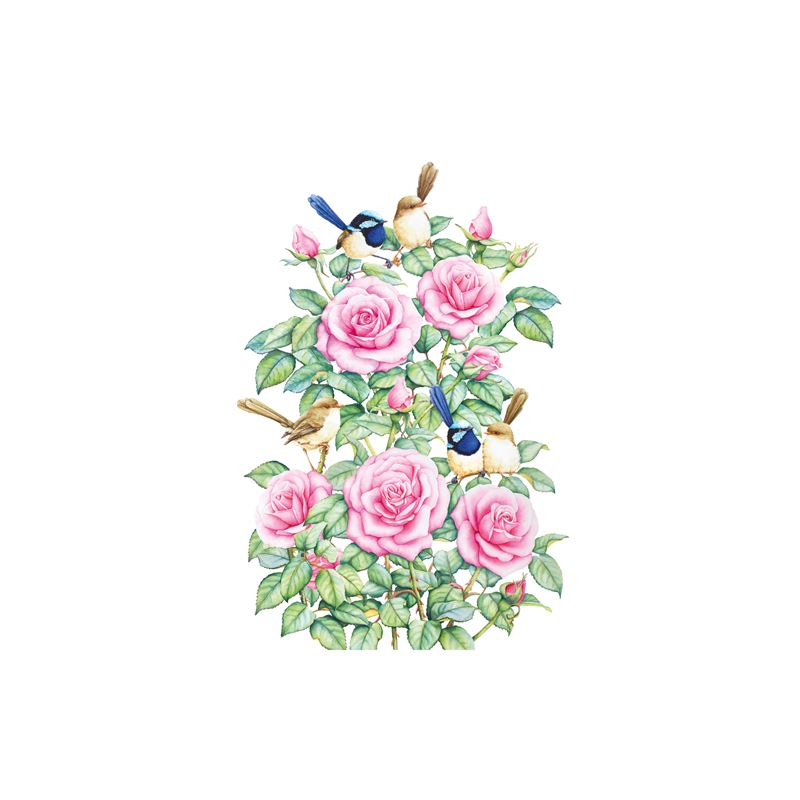 Royal Botanic Gardens – Garden Friends Tea Towel 50x70cm Wren