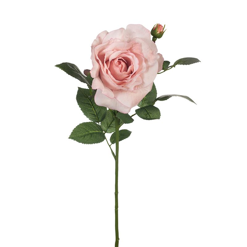 Rose Elle Spray Light Pink 64cml