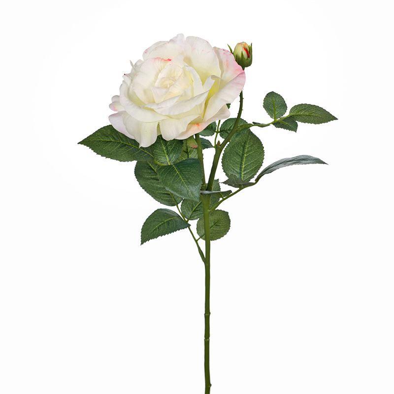 Rose Elle Spray Cream Pink 64cml