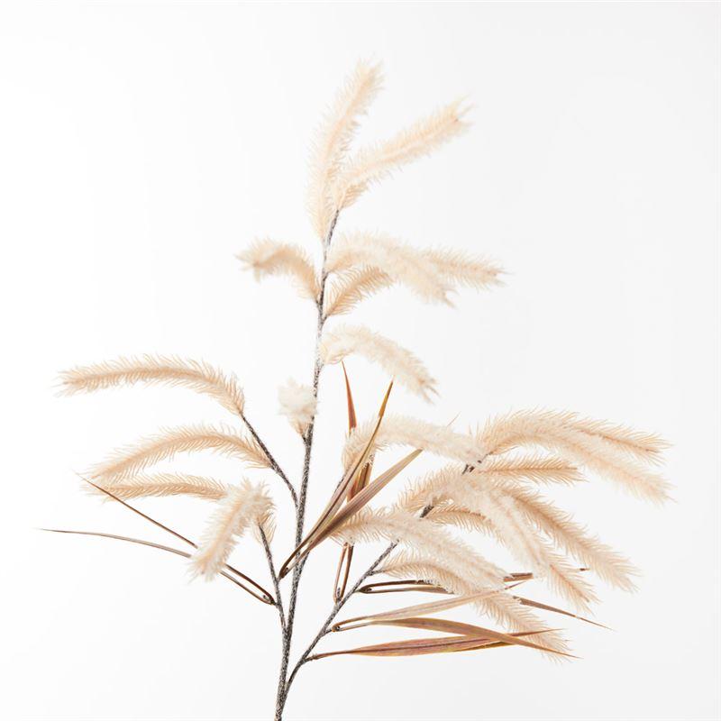 Pampas Grass Spray Cream 79cm