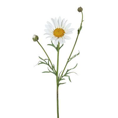 Daisy Flower White 46Cml