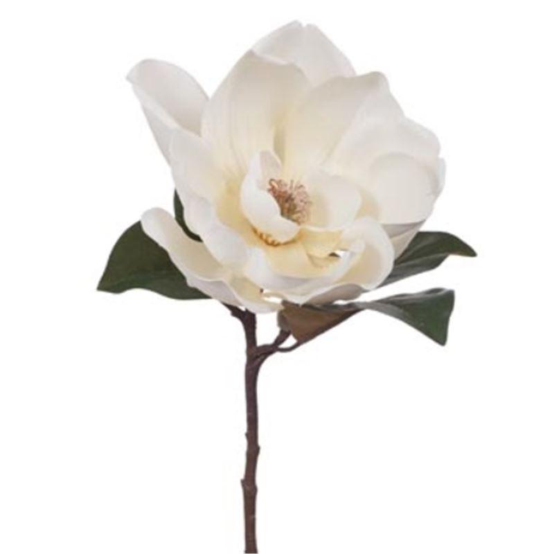 Magnolia Bloom 50cm – White