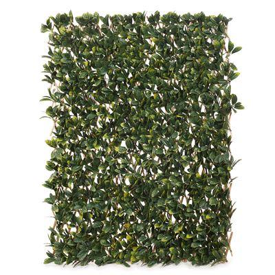 Laurel Leaf Trellis Green 200Cml X 100Cmh