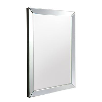 Luna Rectangle Mirror 36x24inch